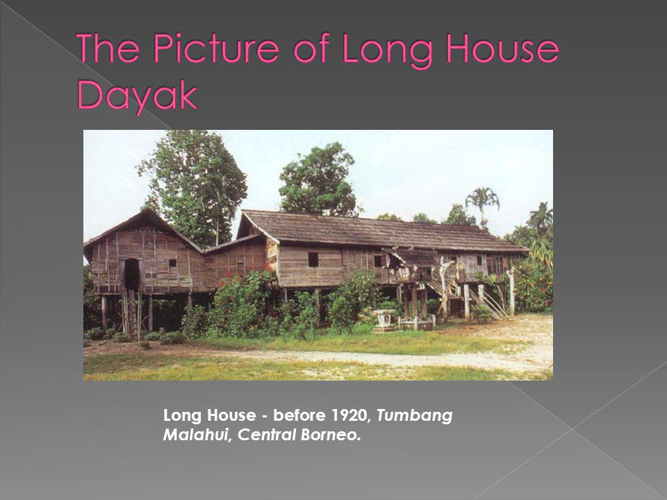 The Dayak, some of the original inhabitants of Borneo, build long houses on stilts, using ironwood for the structure and tree bark for the walls; the