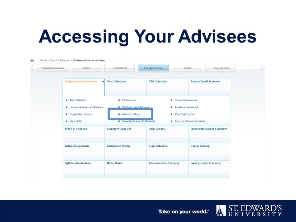 Accessing Your Advisees