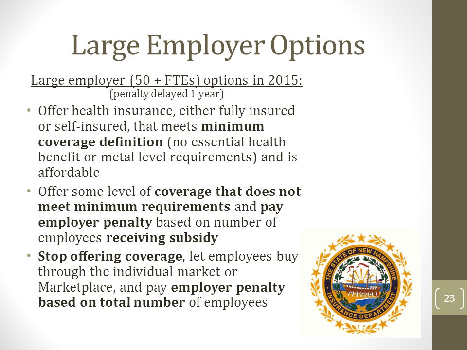 Large Employer Options Large employer (50 + FTEs) options in 2015: (penalty delayed 1 year) Offer health insurance, either fully insured or selfinsure