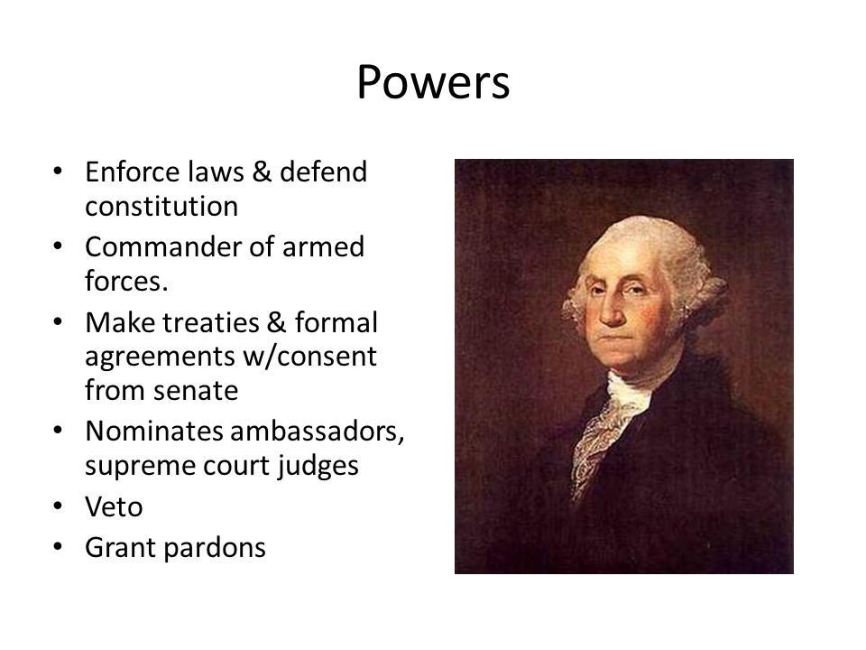 Powers Enforce laws & defend constitution Commander of armed forces. Make treaties & formal agreements w/consent from senate Nominates ambassadors, su