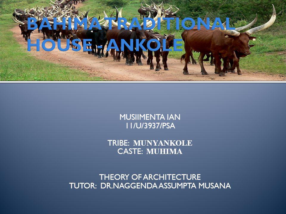 MUSIIMENTA IAN 11/U/3937/PSA TRIBE: MUNYANKOLE CASTE: MUHIMA THEORY OF ARCHITECTURE TUTOR: DR.NAGGENDA ASSUMPTA MUSANA