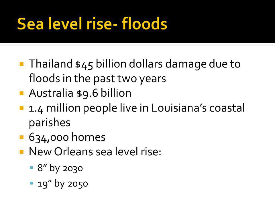 Levees Restoration of wetlands Sediment use form Mississippi to rebuild land Abandon land Adapt!