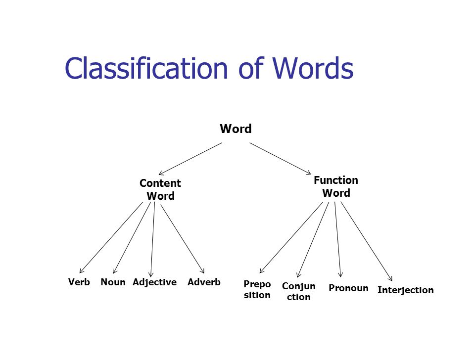 Classification of Words Word Content Word Function Word VerbNounAdjectiveAdverb Prepo sition Conjun ction Pronoun Interjection