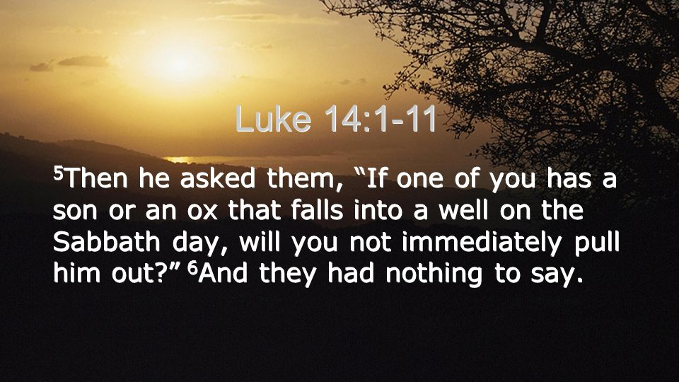 Luke 14:1-11 5 Then he asked them, If one of you has a son or an ox that falls into a well on the Sabbath day, will you not immediately pull him out?