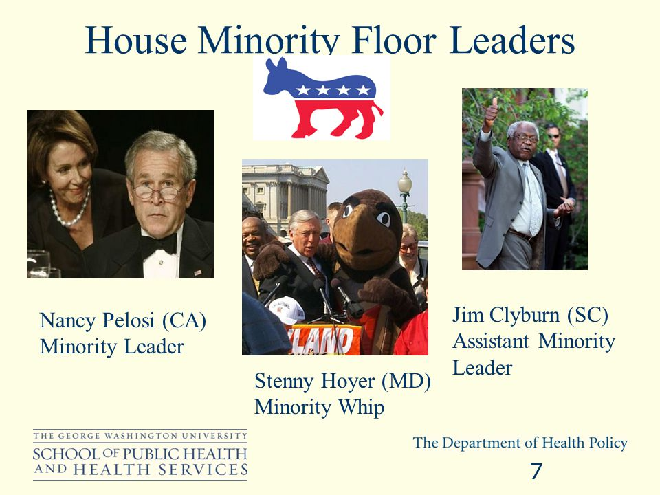 House Minority Floor Leaders 7 Nancy Pelosi (CA) Minority Leader Stenny Hoyer (MD) Minority Whip Jim Clyburn (SC) Assistant Minority Leader