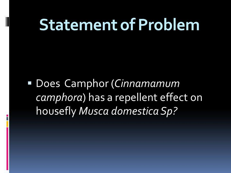 Statement of Problem Does Camphor (Cinnamamum camphora) has a repellent effect on housefly Musca domestica Sp?