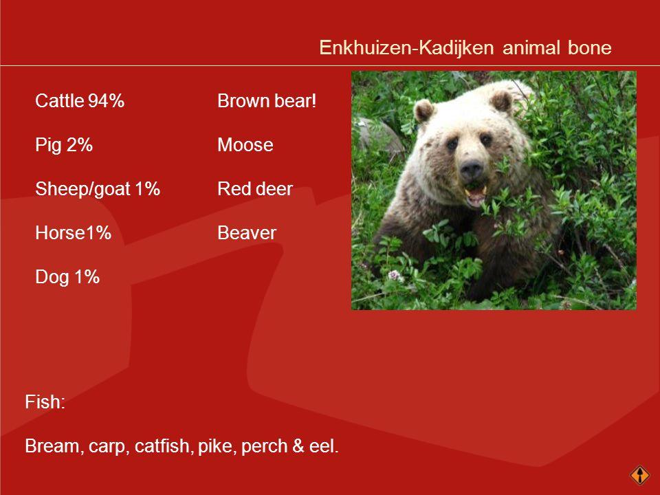 Cattle 94% Pig 2% Sheep/goat 1% Horse1% Dog 1% Brown bear! Moose Red deer Beaver Fish: Bream, carp, catfish, pike, perch & eel.