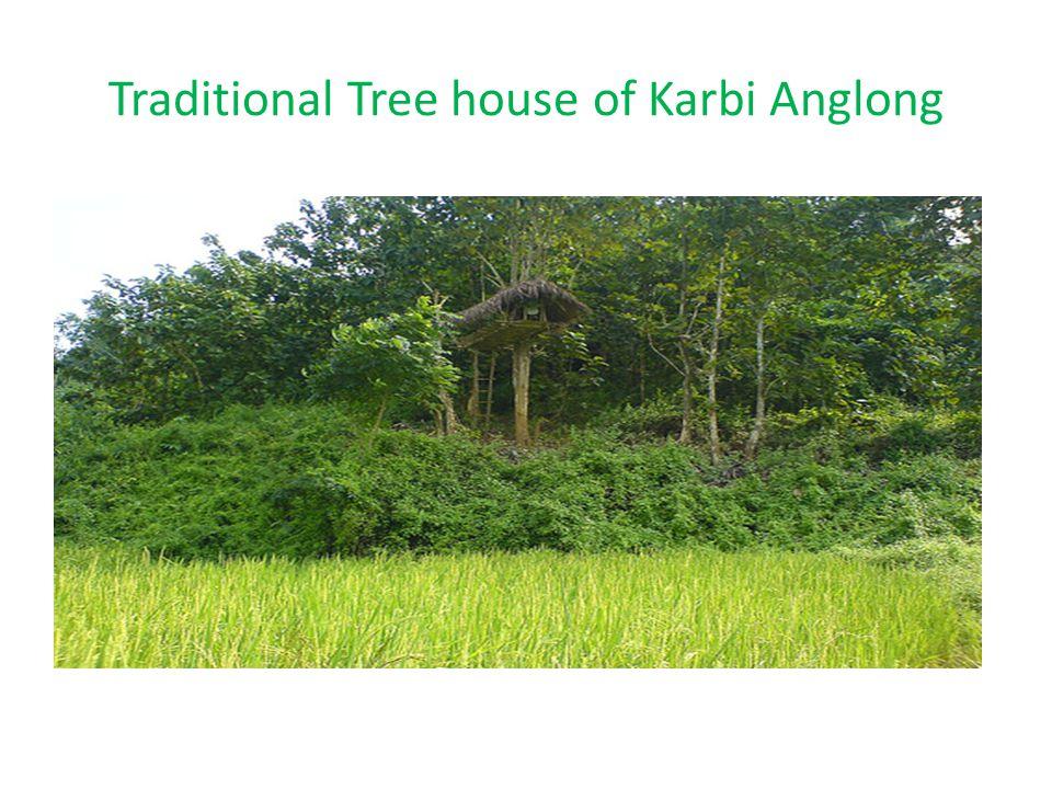 Traditional Chang Ghar of Karbi Anglong (Hemtun)