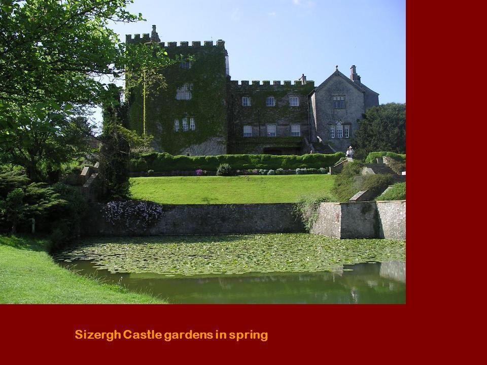 Sizergh Castle gardens in spring