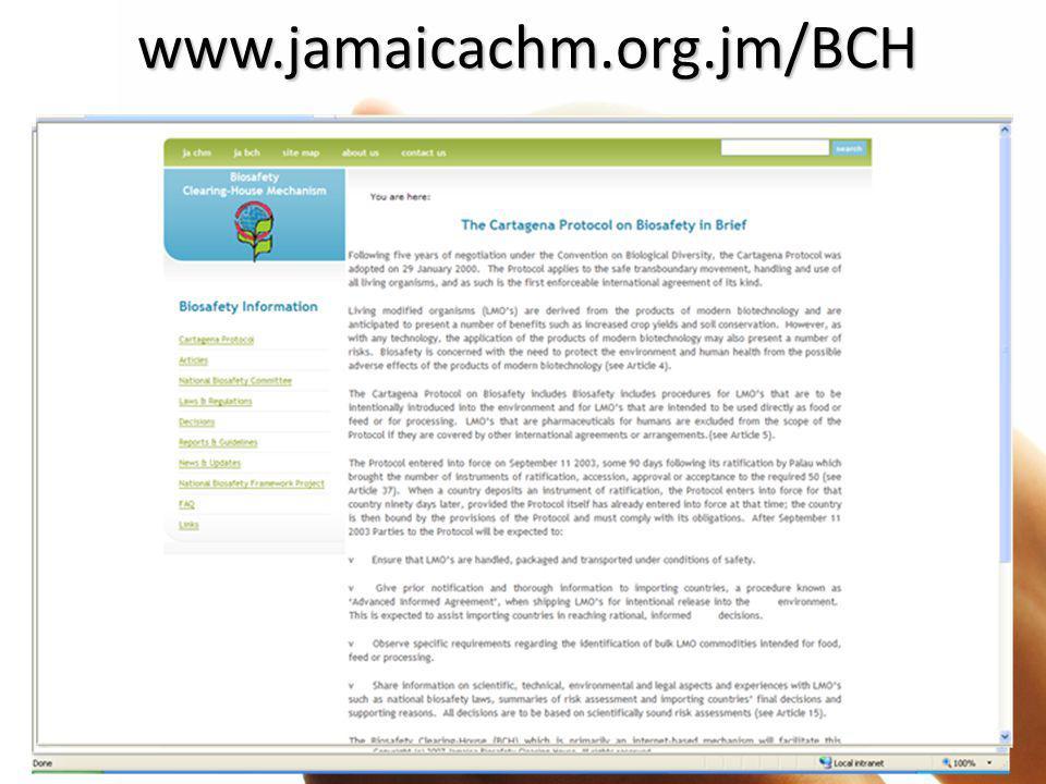 www.jamaicachm.org.jm/BCH