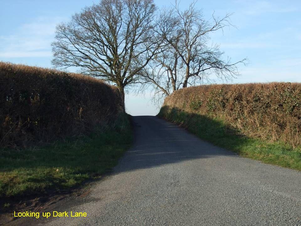 Looking up Dark Lane