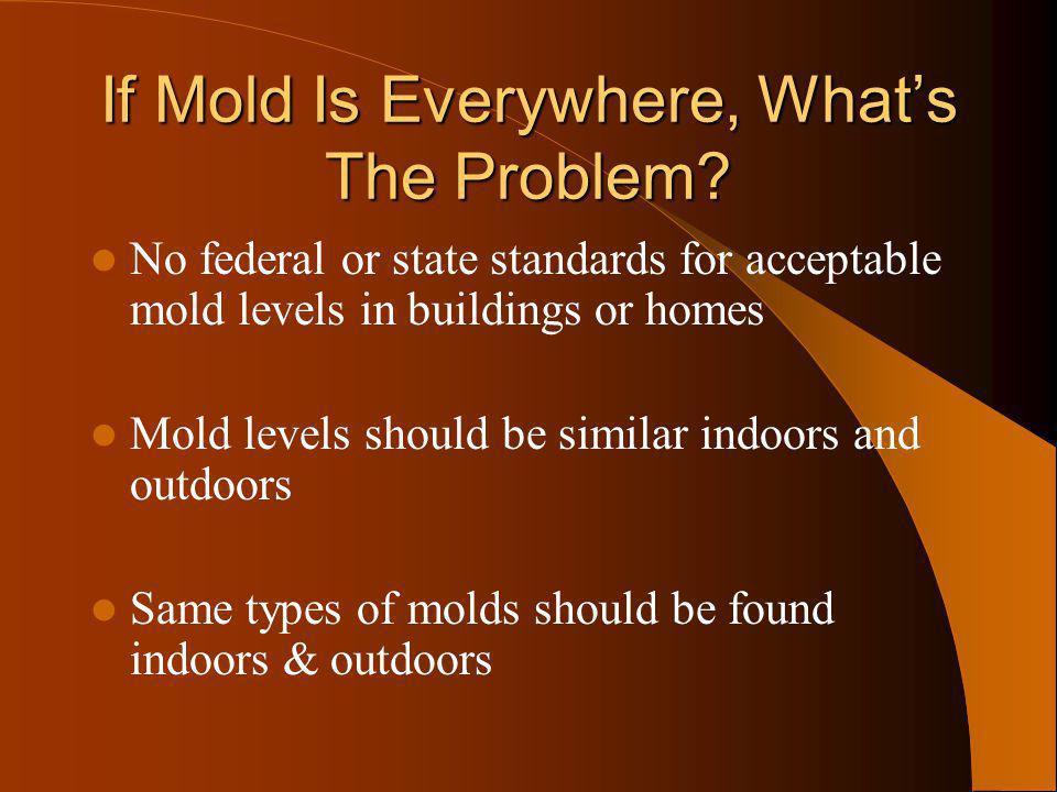 If Mold Is Everywhere, Whats The Problem? No federal or state standards for acceptable mold levels in buildings or homes Mold levels should be similar