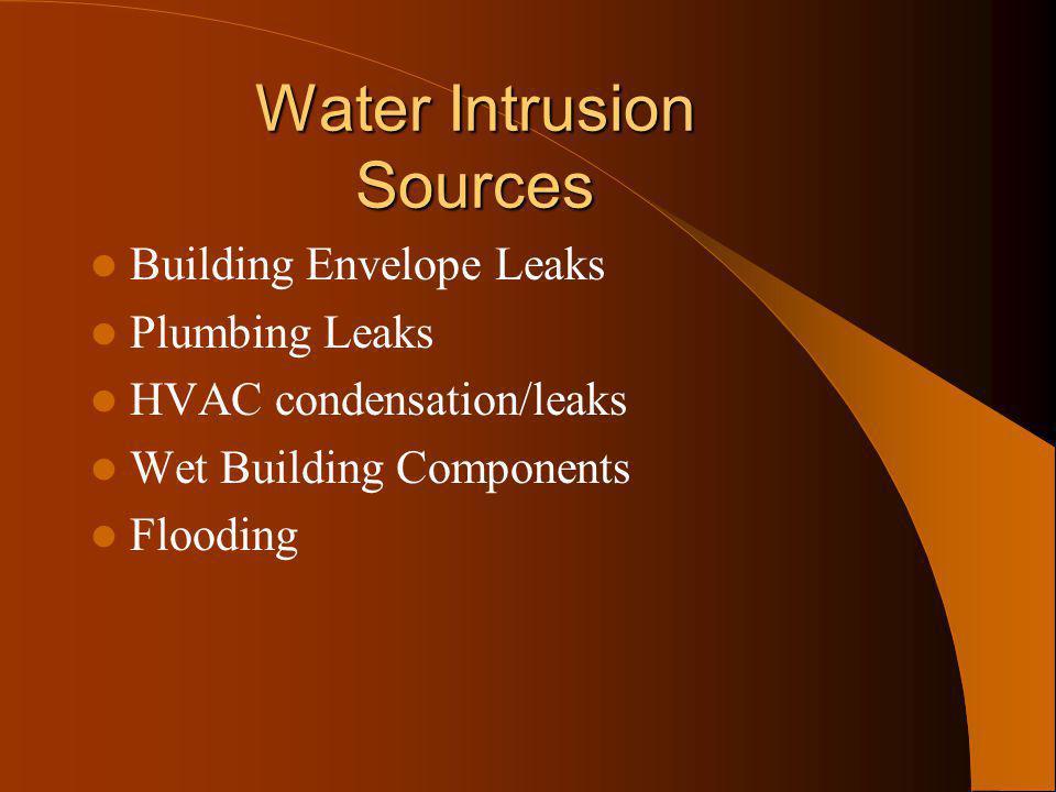 Water Intrusion Sources Building Envelope Leaks Plumbing Leaks HVAC condensation/leaks Wet Building Components Flooding