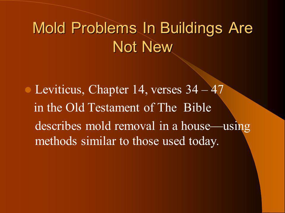 Mold Problems In Buildings Are Not New Leviticus, Chapter 14, verses 34 – 47 in the Old Testament of The Bible describes mold removal in a houseusing