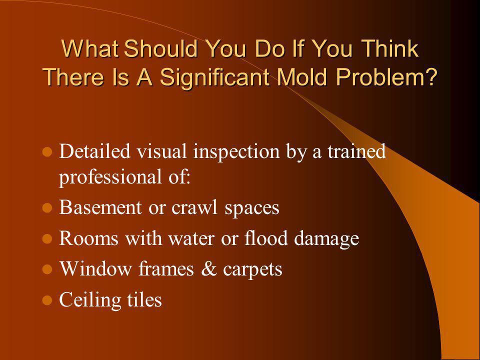 What Should You Do If You Think There Is A Significant Mold Problem? Detailed visual inspection by a trained professional of: Basement or crawl spaces