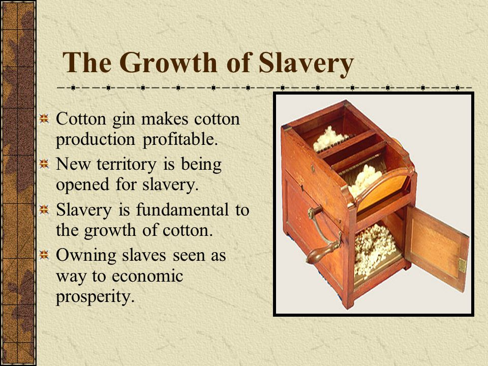 The Growth of Slavery Cotton gin makes cotton production profitable. New territory is being opened for slavery. Slavery is fundamental to the growth o