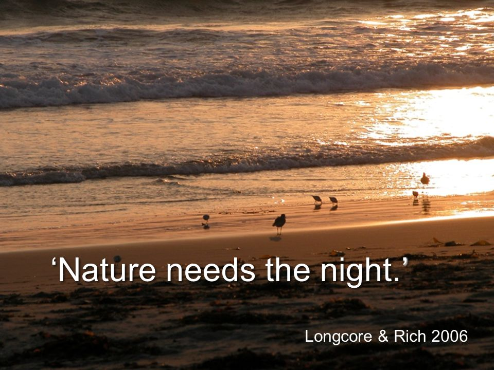 Nature needs the night. Longcore & Rich 2006