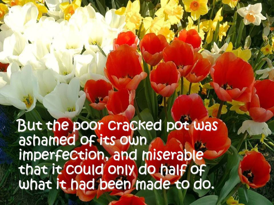 But the poor cracked pot was ashamed of its own imperfection, and miserable that it could only do half of what it had been made to do.