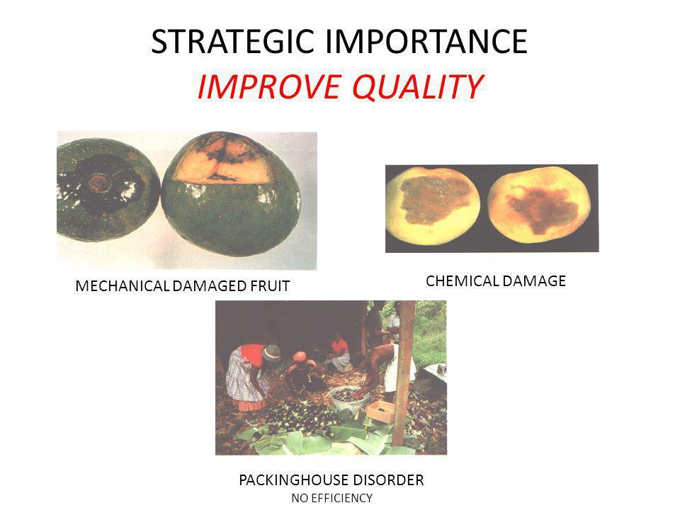 STRATEGIC IMPORTANCE IMPROVE QUALITY MECHANICAL DAMAGED FRUIT CHEMICAL DAMAGE PACKINGHOUSE DISORDER NO EFFICIENCY