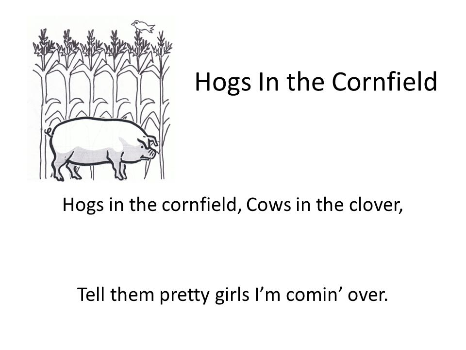 Hogs In the Cornfield Hogs in the cornfield, Cows in the clover, Tell them pretty girls Im comin over.