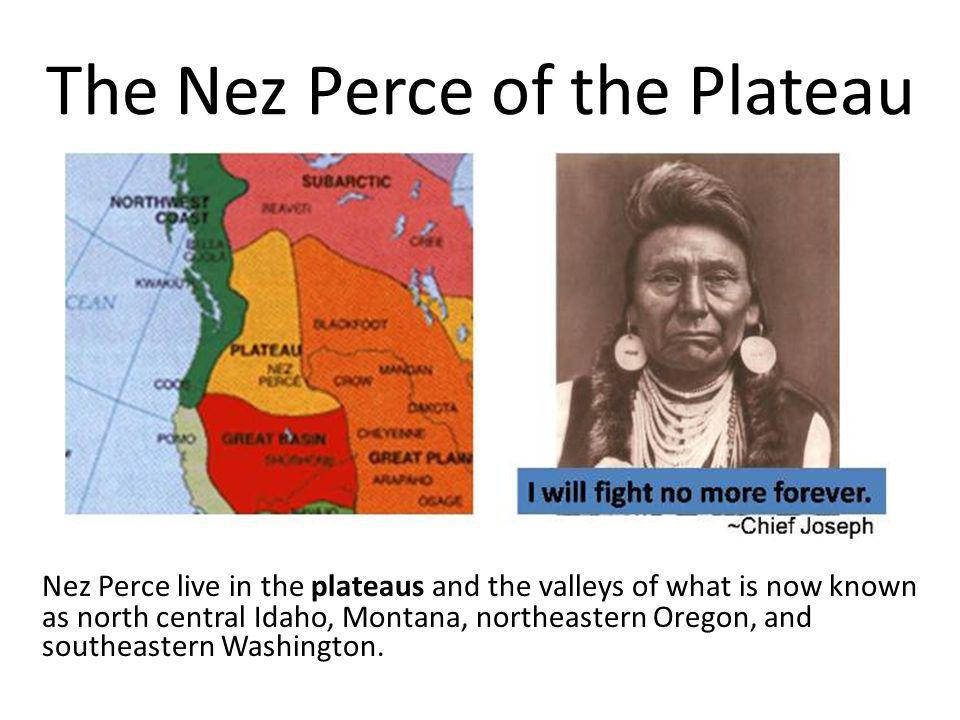The Nez Perce of the Plateau Nez Perce live in the plateaus and the valleys of what is now known as north central Idaho, Montana, northeastern Oregon,