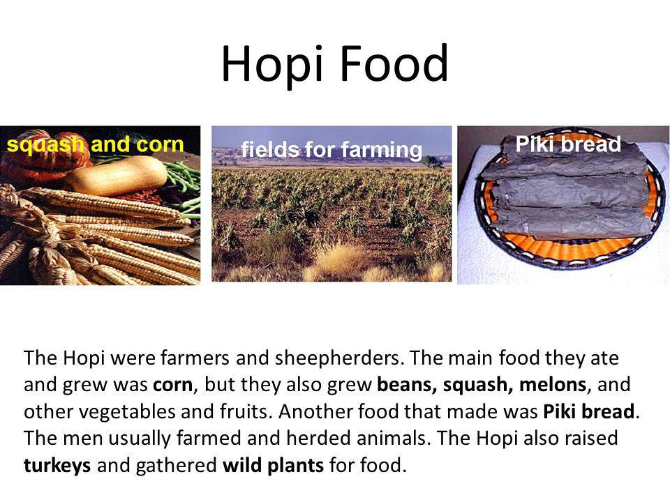 Hopi Food The Hopi were farmers and sheepherders. The main food they ate and grew was corn, but they also grew beans, squash, melons, and other vegeta