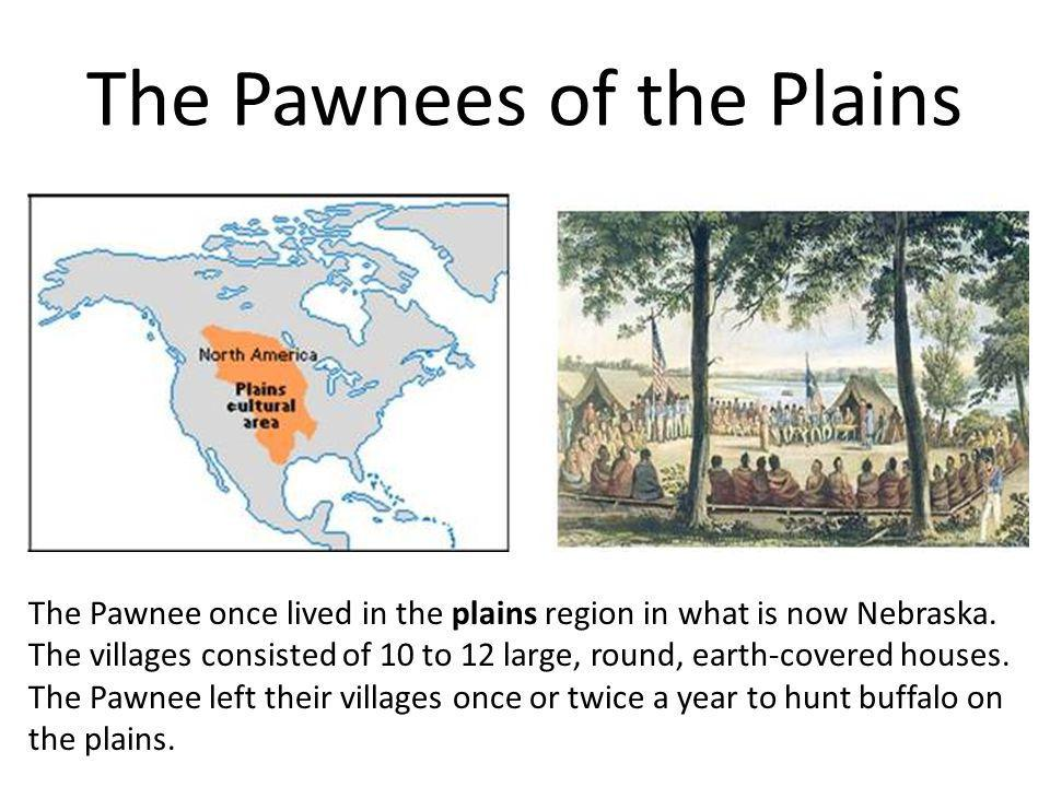 The Pawnees of the Plains The Pawnee once lived in the plains region in what is now Nebraska. The villages consisted of 10 to 12 large, round, earth-c