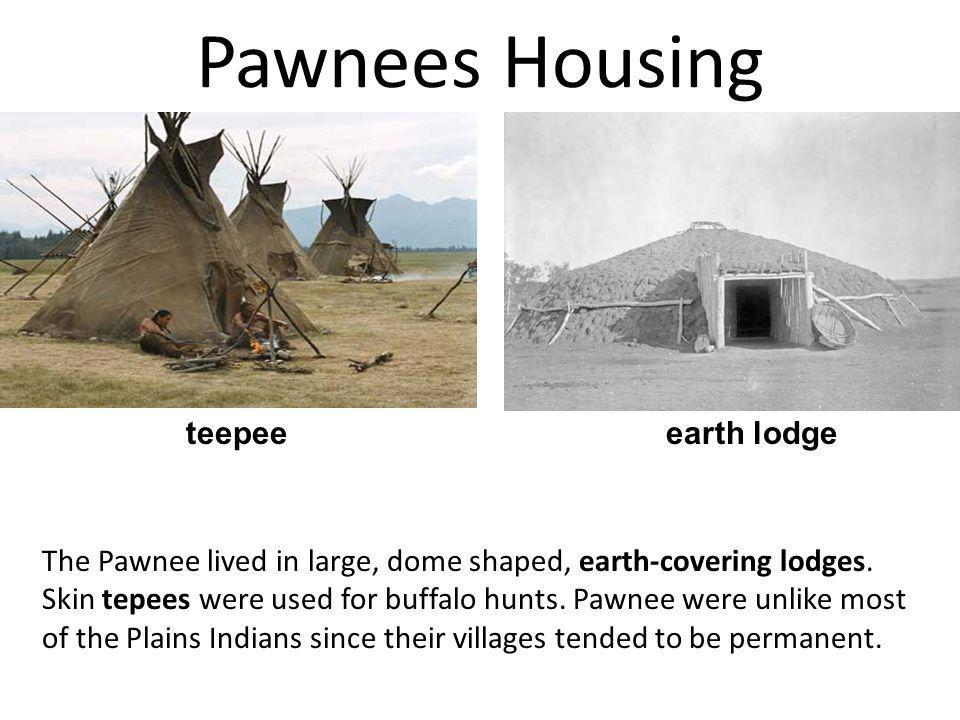 Pawnees Housing The Pawnee lived in large, dome shaped, earth-covering lodges. Skin tepees were used for buffalo hunts. Pawnee were unlike most of the