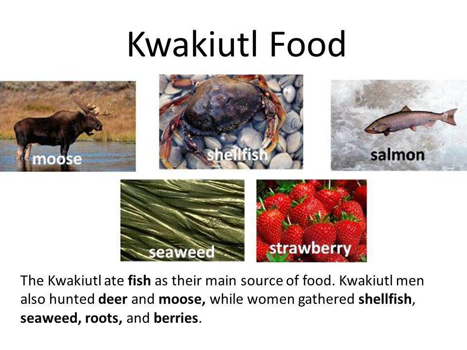 Kwakiutl Food The Kwakiutl ate fish as their main source of food. Kwakiutl men also hunted deer and moose, while women gathered shellfish, seaweed, ro