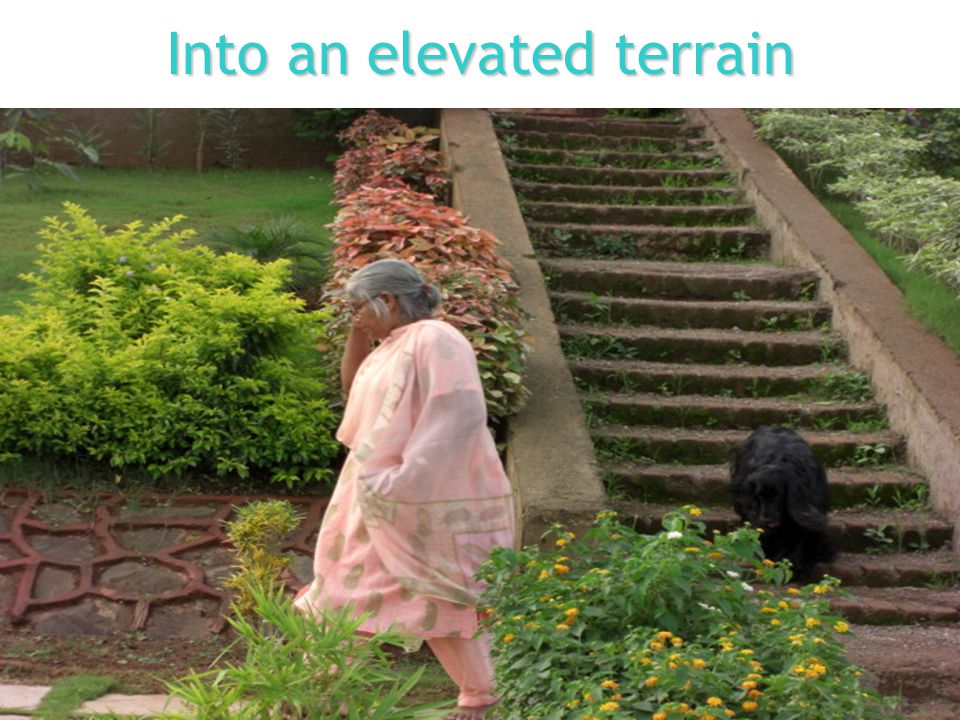 Into an elevated terrain