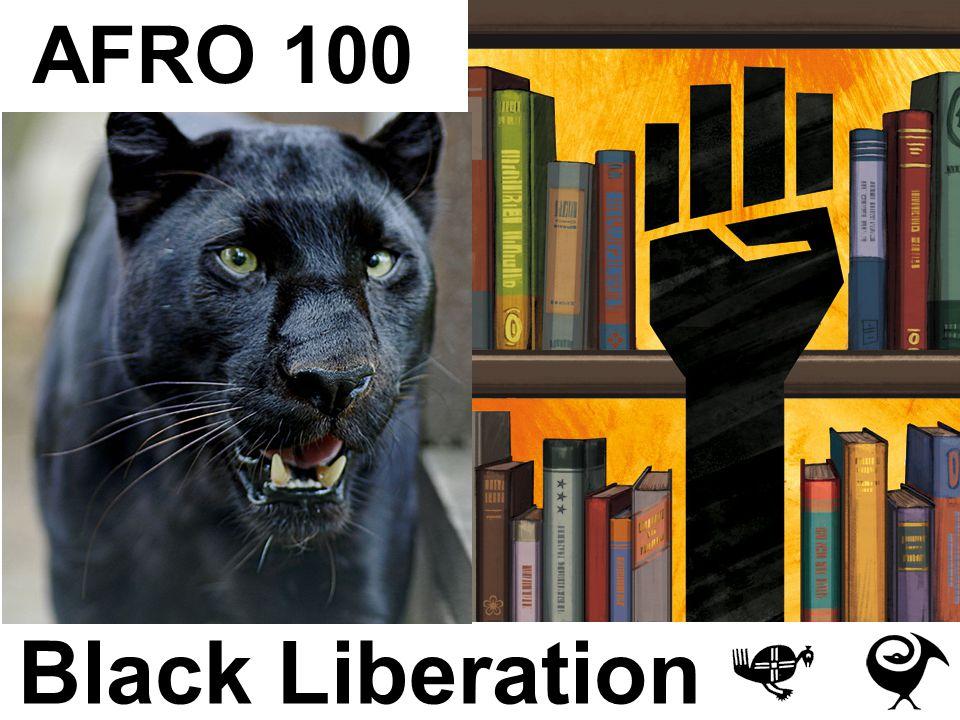 Black Liberation AFRO 100
