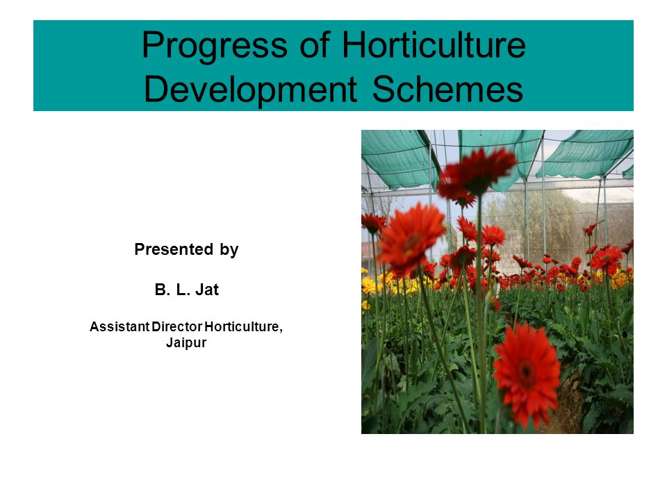 Progress of Horticulture Development Schemes Presented by B.