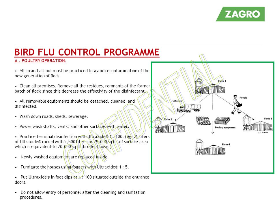 BIRD FLU CONTROL PROGRAMME A. POULTRY OPERATION: All-in and all-out must be practiced to avoid recontamination of the new generation of flock. Clean a