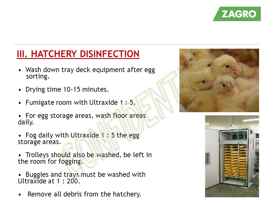 Wash down tray deck equipment after egg sorting.Drying time 10-15 minutes.
