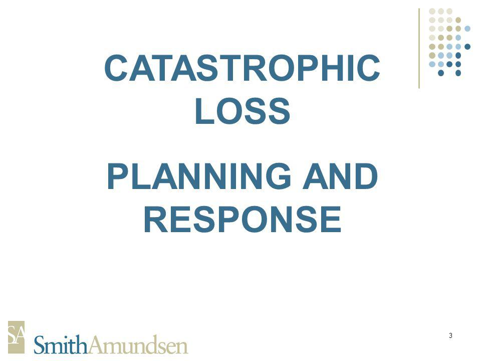 3 CATASTROPHIC LOSS PLANNING AND RESPONSE