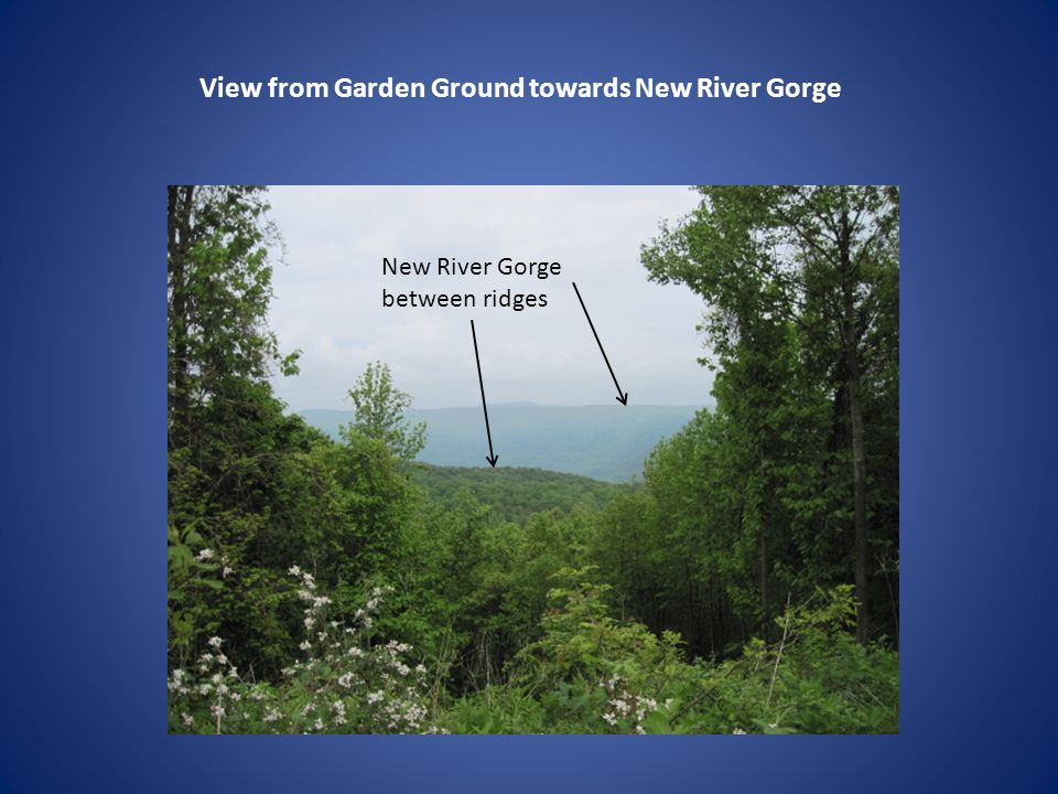 View from Garden Ground towards New River Gorge New River Gorge between ridges