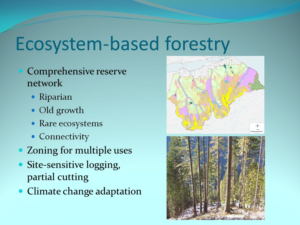 Ecosystem-based forestry Comprehensive reserve network Riparian Old growth Rare ecosystems Connectivity Zoning for multiple uses Site-sensitive logging, partial cutting Climate change adaptation