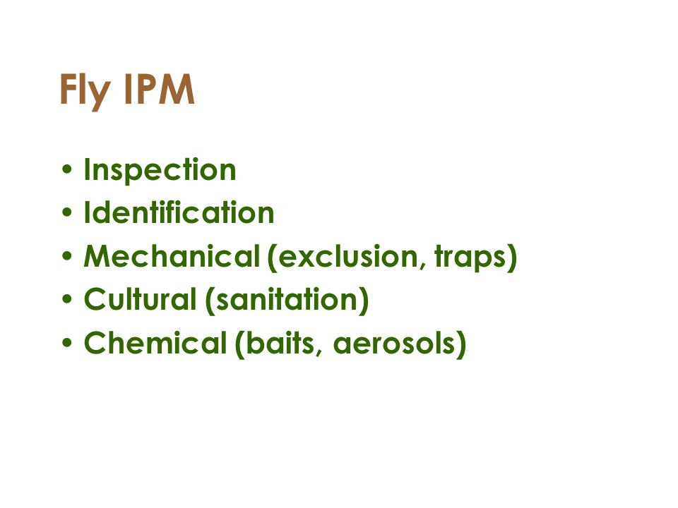 Fly IPM Inspection Identification Mechanical (exclusion, traps) Cultural (sanitation) Chemical (baits, aerosols)