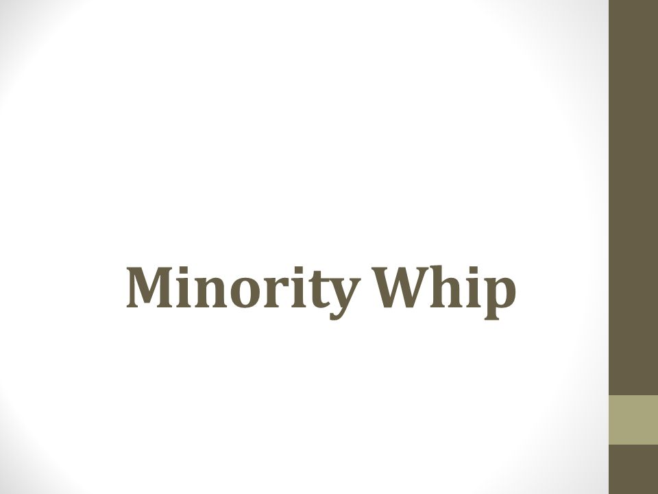 Minority Whip