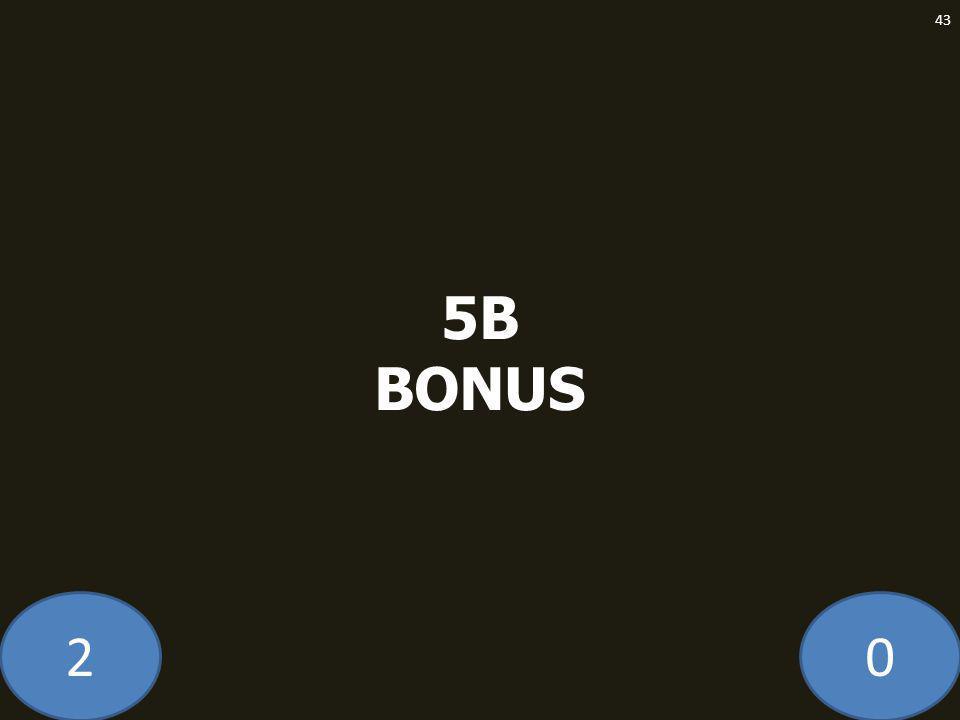 20 5B BONUS 43