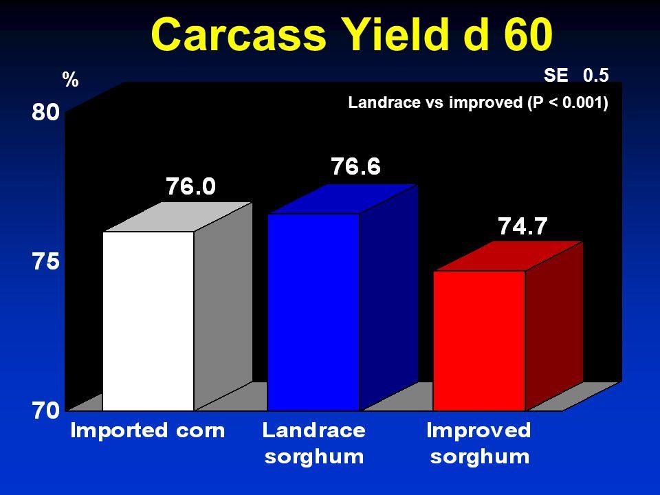 Carcass Yield d 60 % SE 0.5 Landrace vs improved (P < 0.001)