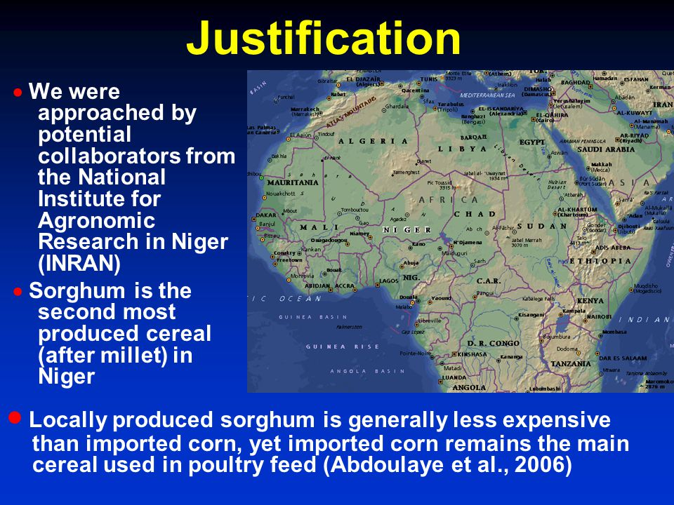 We were approached by potential collaborators from the National Institute for Agronomic Research in Niger (INRAN) Sorghum is the second most produced cereal (after millet) in Niger Justification Locally produced sorghum is generally less expensive than imported corn, yet imported corn remains the main cereal used in poultry feed (Abdoulaye et al., 2006)