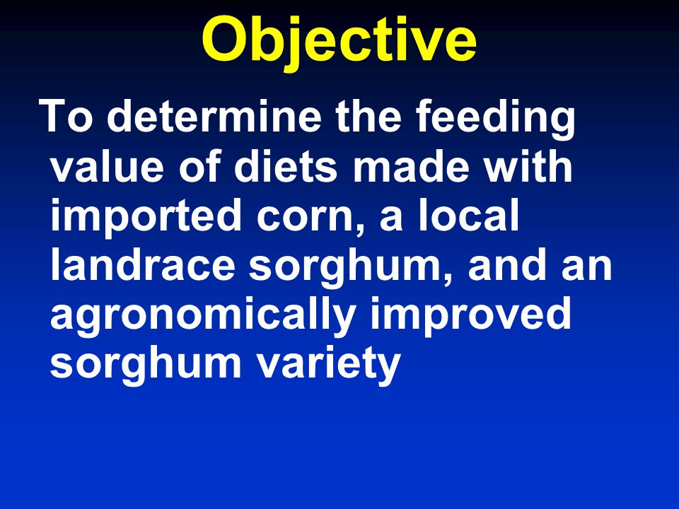 Objective To determine the feeding value of diets made with imported corn, a local landrace sorghum, and an agronomically improved sorghum variety