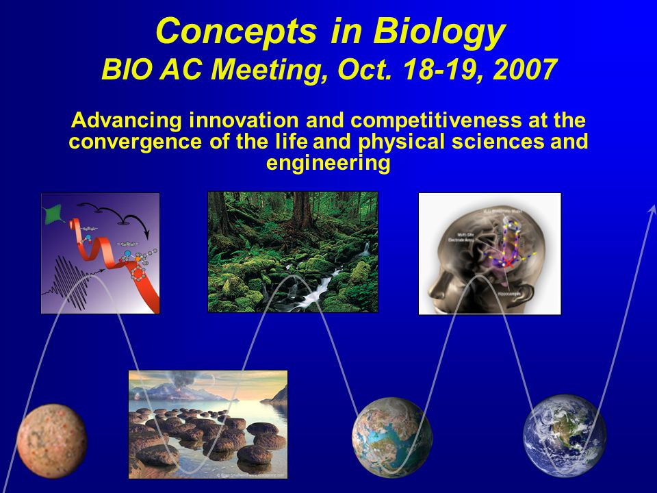 Concepts in Biology BIO AC Meeting, Oct. 18-19, 2007 Advancing innovation and competitiveness at the convergence of the life and physical sciences and