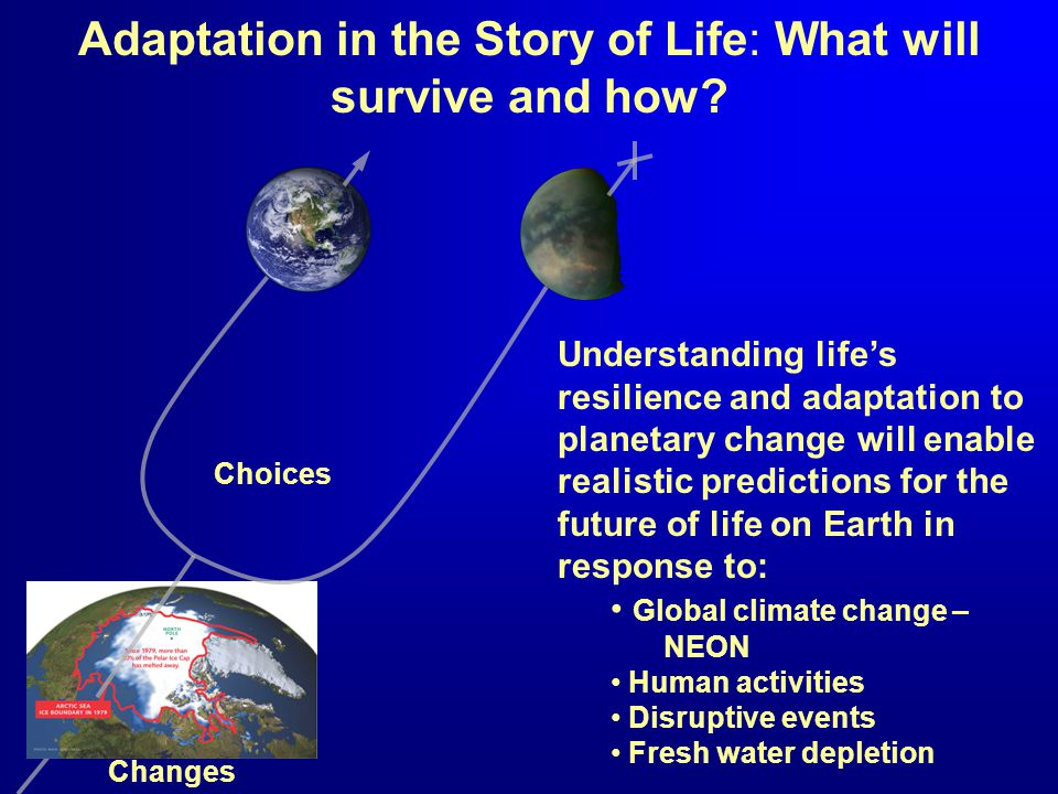 Adaptation in the Story of Life: What will survive and how.