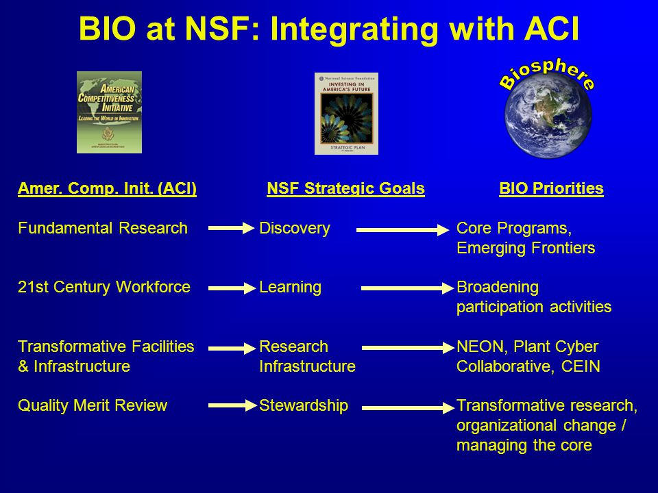 NSF Strategic Goals Discovery Learning Research Infrastructure Stewardship Amer. Comp. Init. (ACI) Fundamental Research 21st Century Workforce Transfo