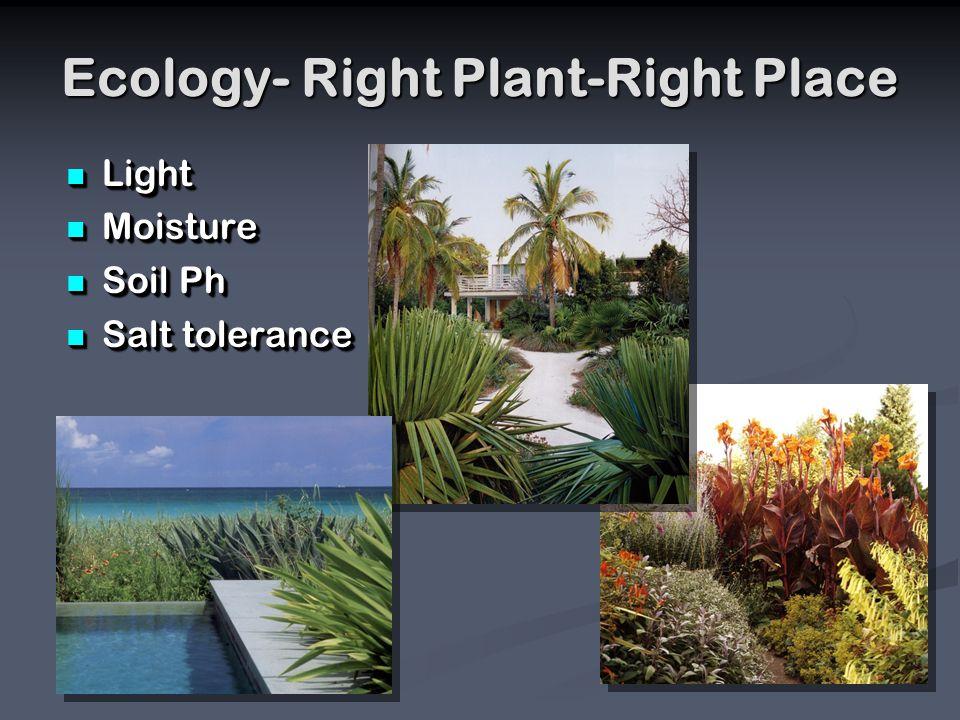 Ecology- Right Plant-Right Place Light Light Moisture Moisture Soil Ph Soil Ph Salt tolerance Salt tolerance Light Light Moisture Moisture Soil Ph Soil Ph Salt tolerance Salt tolerance