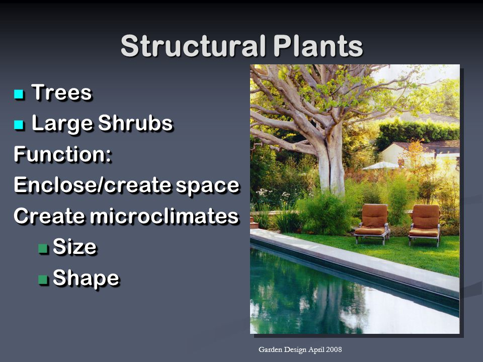 Structural Plants Trees Trees Large Shrubs Large ShrubsFunction: Enclose/create space Create microclimates Size Size Shape Shape Trees Trees Large Shr
