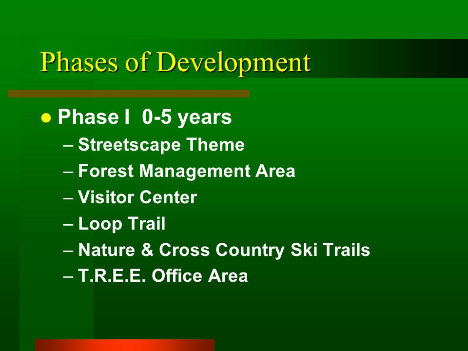 Phases of Development Phase I 0-5 years –Streetscape Theme –Forest Management Area –Visitor Center –Loop Trail –Nature & Cross Country Ski Trails –T.R.E.E.