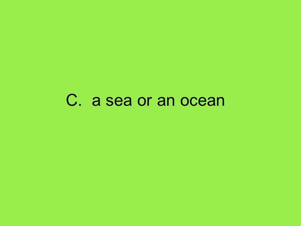 C. a sea or an ocean